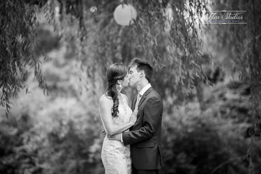 black and white kissing under the tree