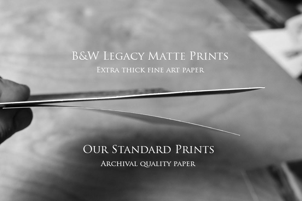 Flax Studios Print Products-20.jpg