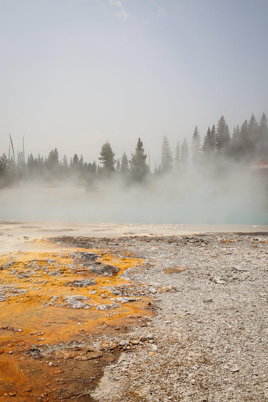 Yellowstone-24.jpg