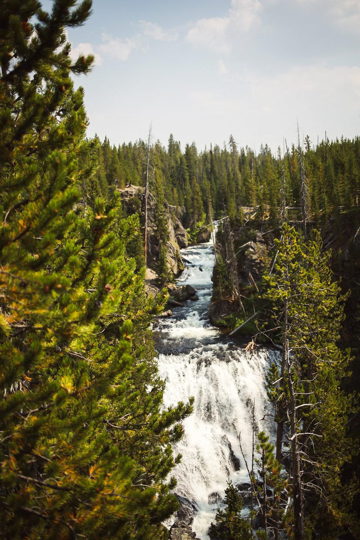 Yellowstone-42.jpg