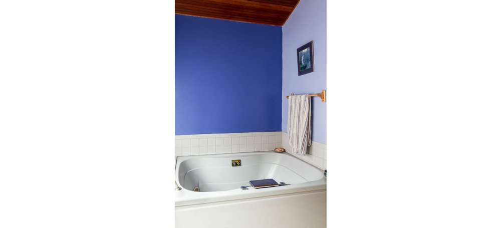 real-estate-residential-ypsilanti-bathroom-jacuzzi-cjsouth-12.jpg