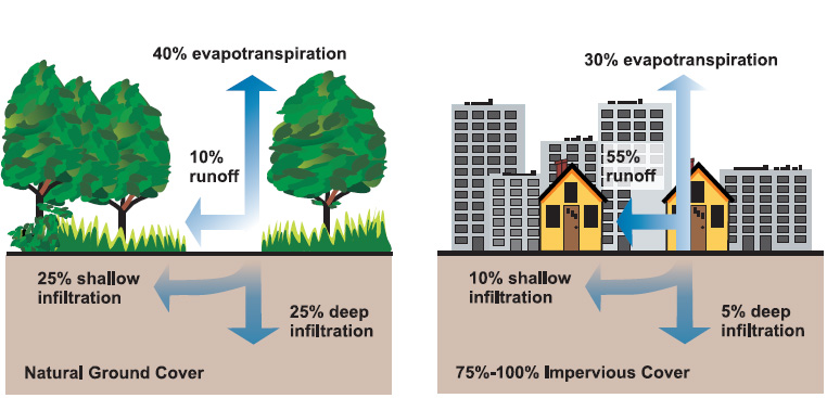 The difference between rainfall ground infiltration in natural and impervious surfaces. Graphic by the US Environmental Protection Agency.
