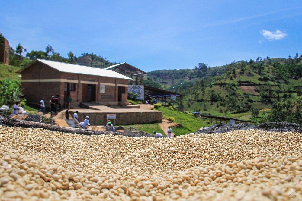 RwandaMay2017-5339.jpg