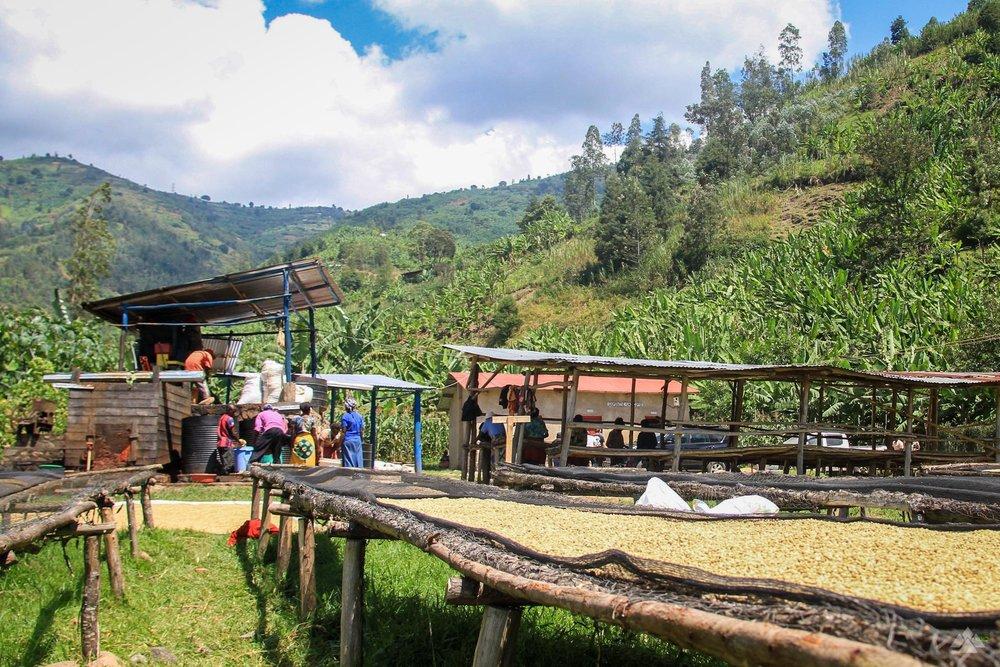 RwandaMay2017-5087.jpg