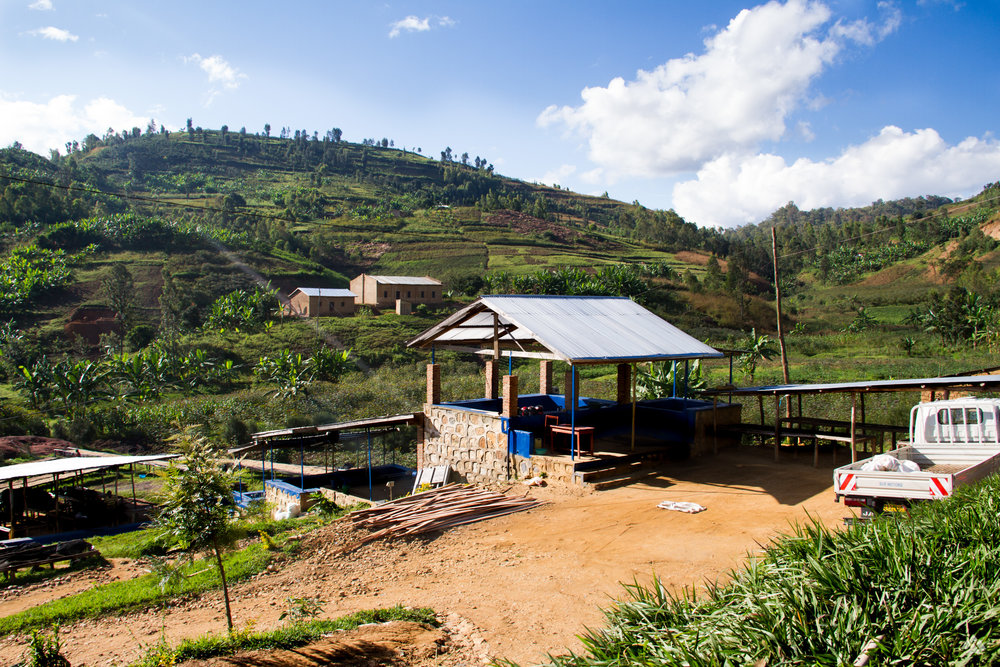 Rugali coffee washing station