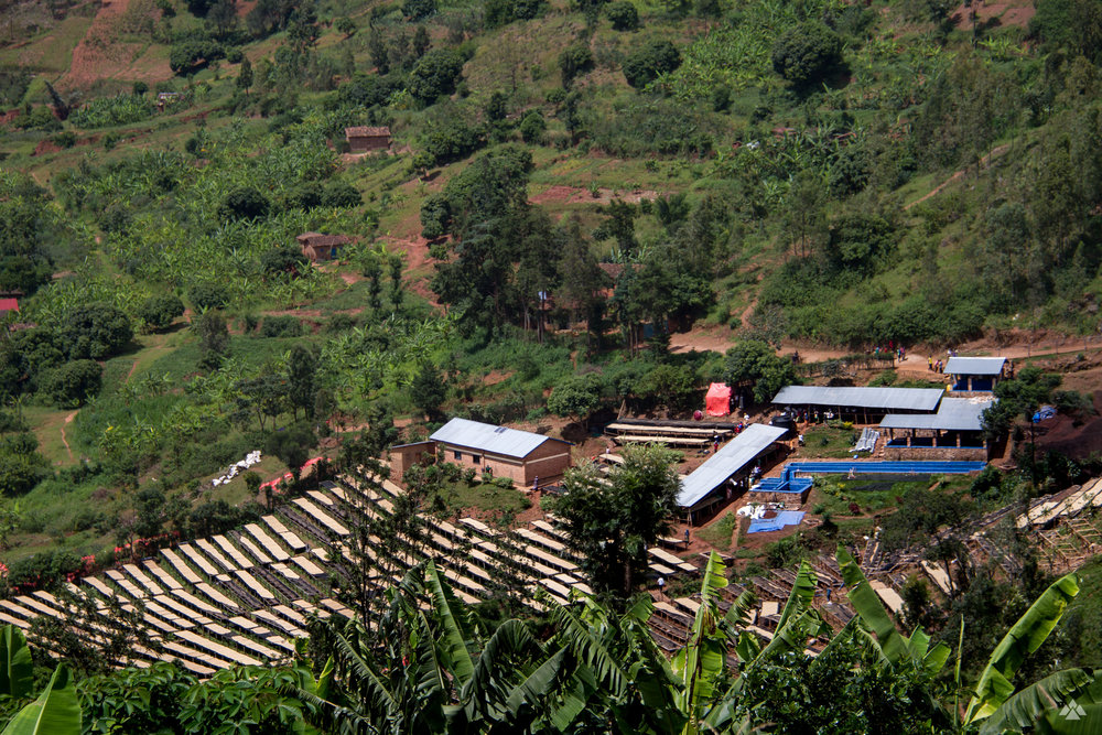 Bumbogo, and its rows upon rows of drying beds