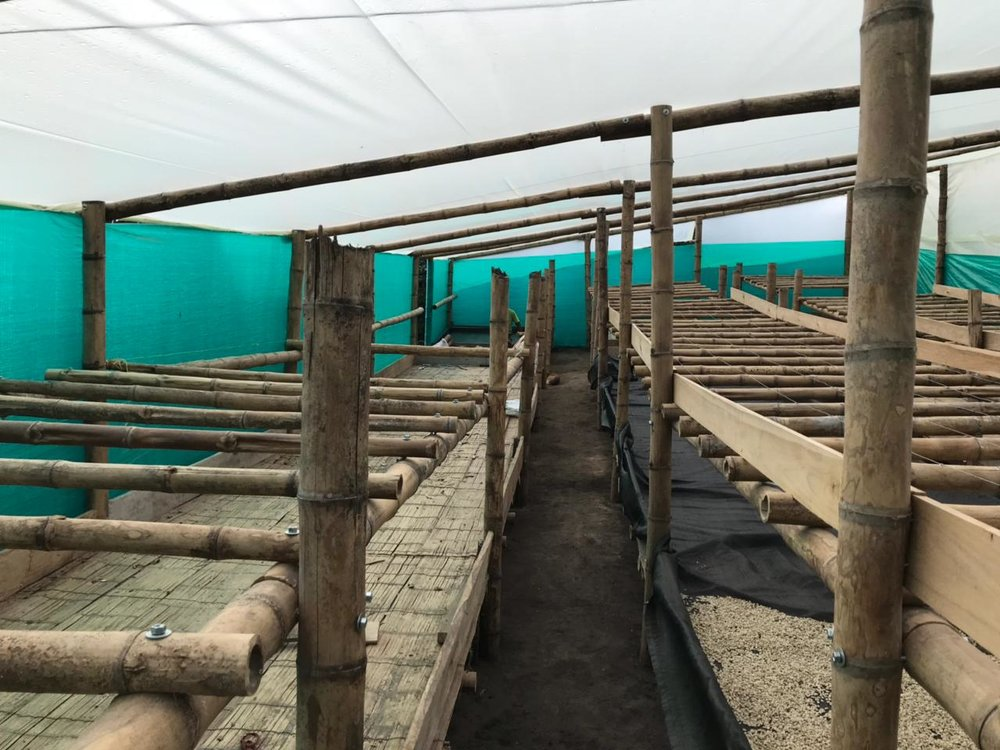 Villamaría drying beds1.jpg