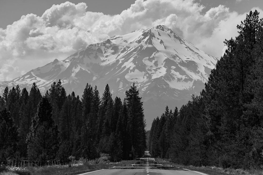 Mighty Mt. Shasta makes a dramatic entrance.