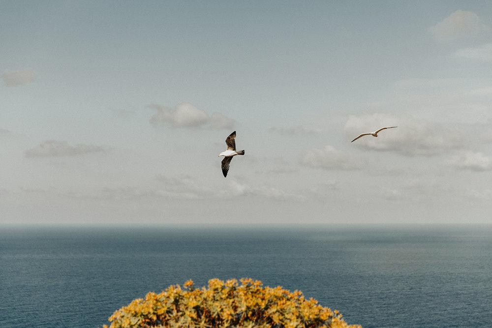 Sicily_353.jpg