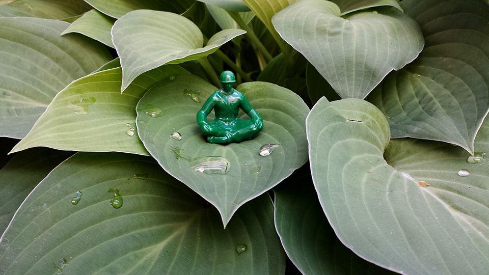 meditaition_leaf_noname.jpg