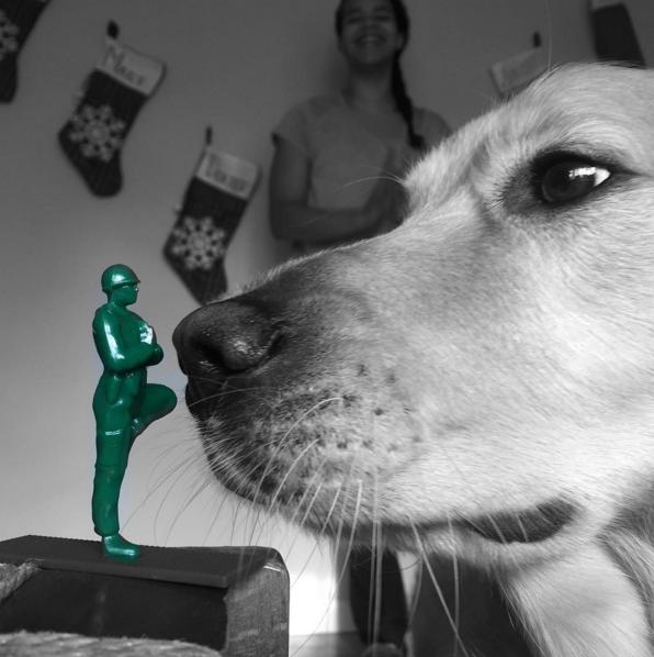 @yogi.dog.lady