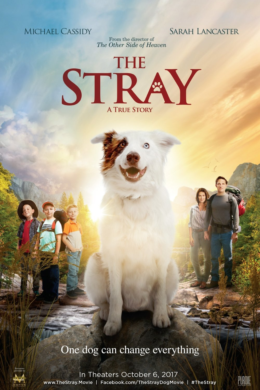 The Stray Poster.jpg