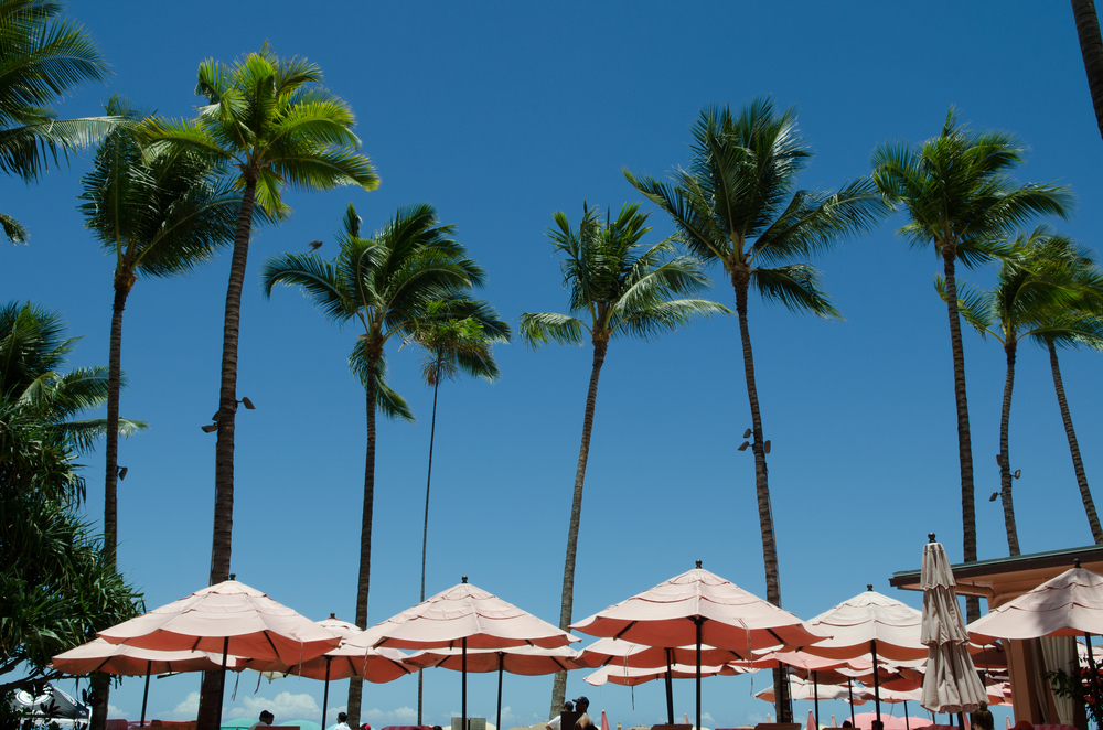 Our daily views of the Royal Hawaiian Resort