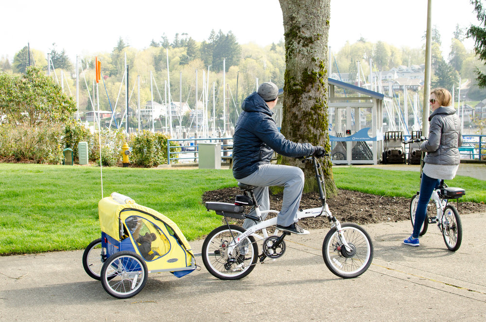 InStep bike trailer // by {Totes and the City}