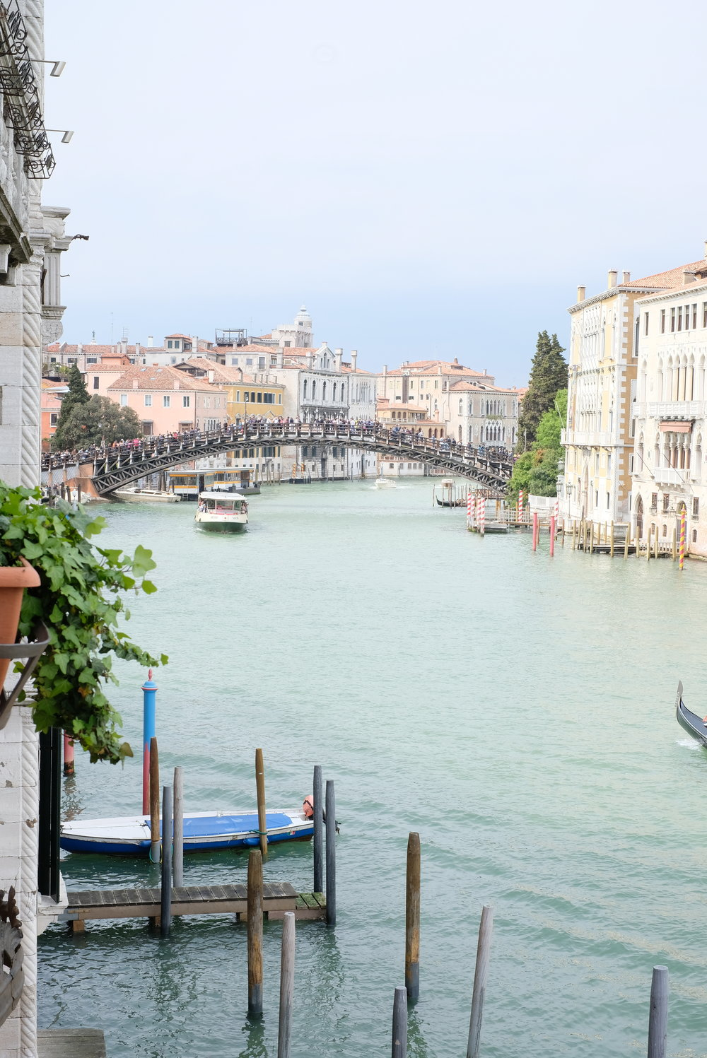 Views of the Grand Canal and the Ponte dell'Accademia (bridge) from our palazzo in Venice, Italy