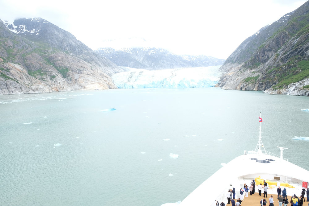 Endicott Arm and Dawes Glacier on the Disney Wonder