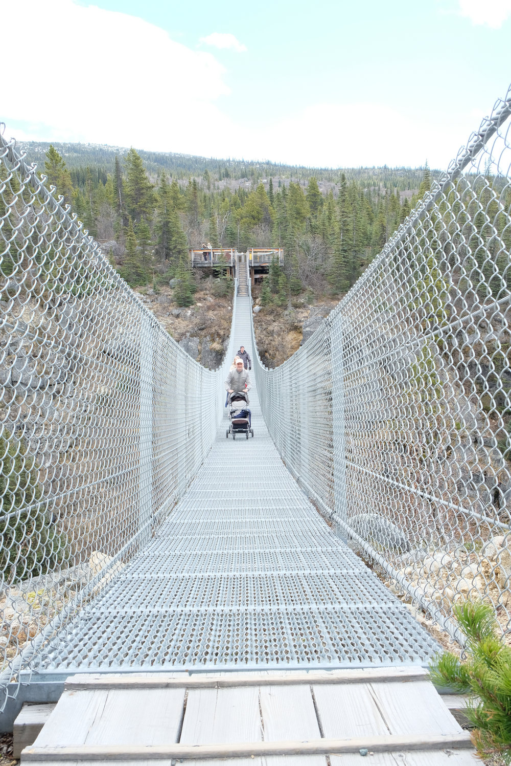 Yukon Suspension Bridge | Our Disney Cruise to Alaska | A Disney Cruise Guide by Totes and the City