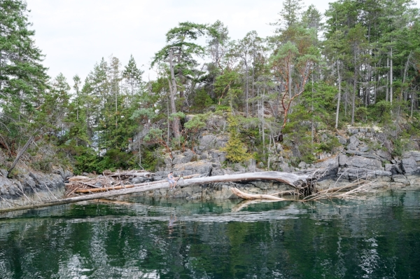 Rocky Shores and Driftwood line the waterfront of Mink Island in Desolation Sound, BC Canada | Image by Totes and the City for Destination: Desolation