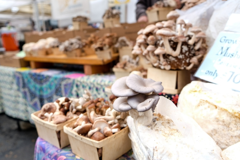 A selection of fresh mushrooms and other produce at the Ballard Farmer's Market | Photo by Totes and the City