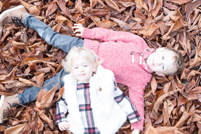 BEFORE original photo 1 of Totes and Apple laying in the leaves at Woodland Park