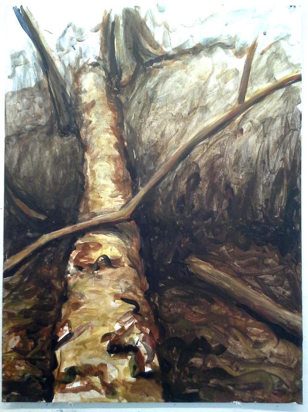 Fallen, Fanno Creek Trail