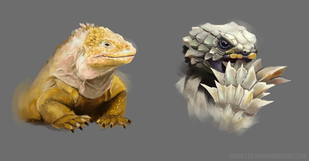 Leesha-Hannigan-Dragon-Studies2