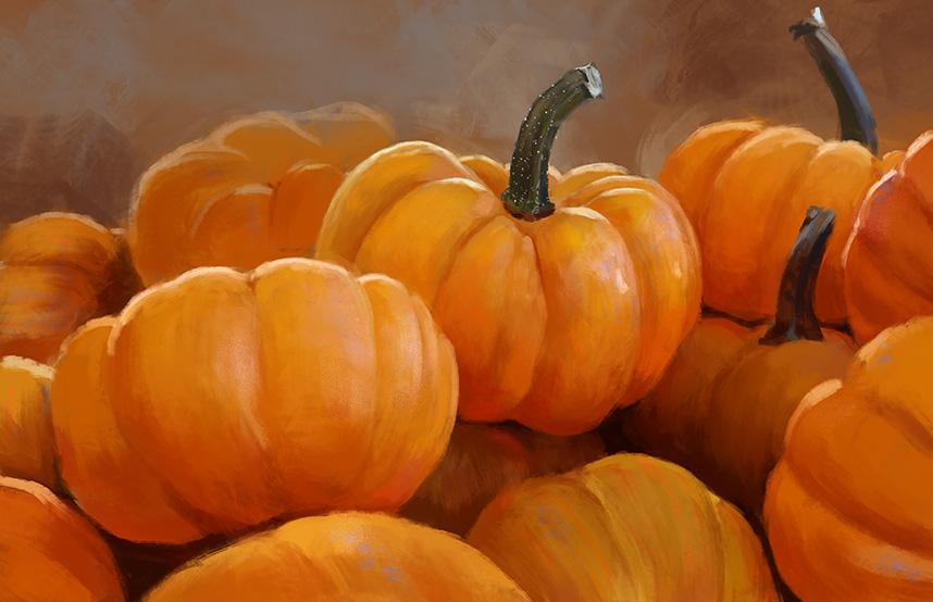LeeshaHannigan_pumpkinstudy