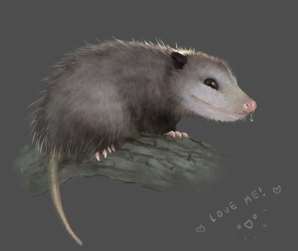 Leesha Hannigan possum