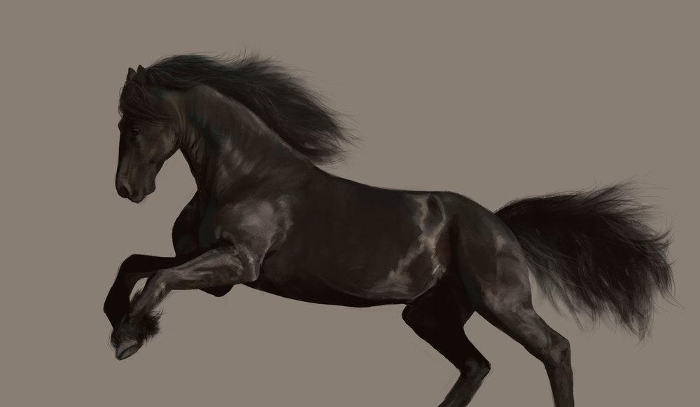 Leesha-Hannigan-Horse-Study