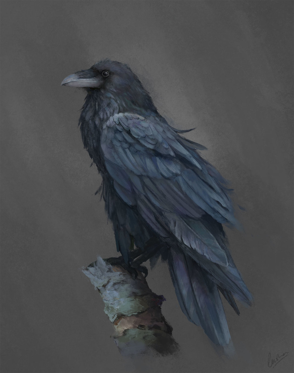 Leesha-Hannigan-Raven