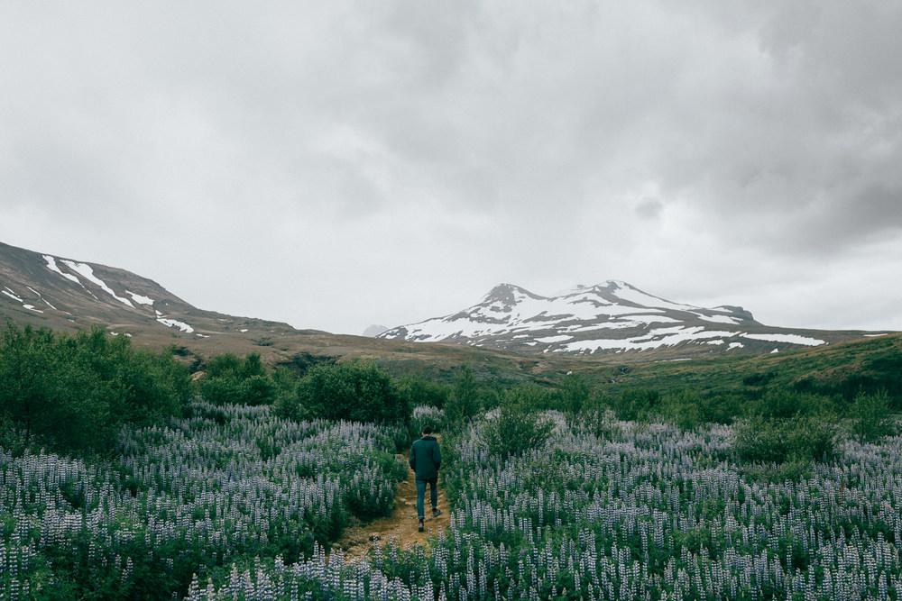 Iceland-4650.jpg