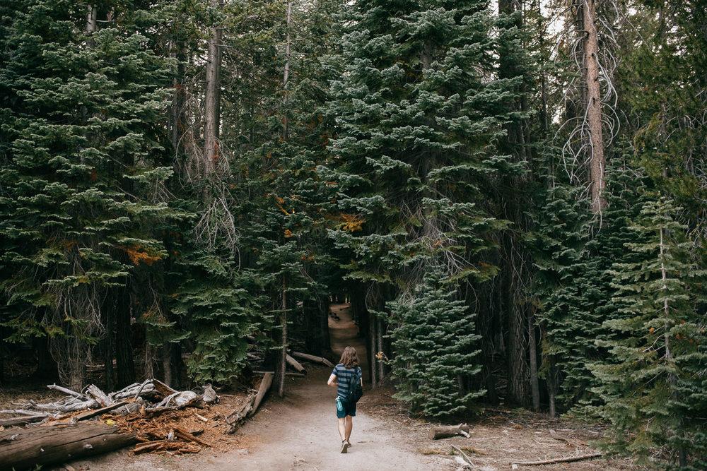 Yosemite-1337.jpg