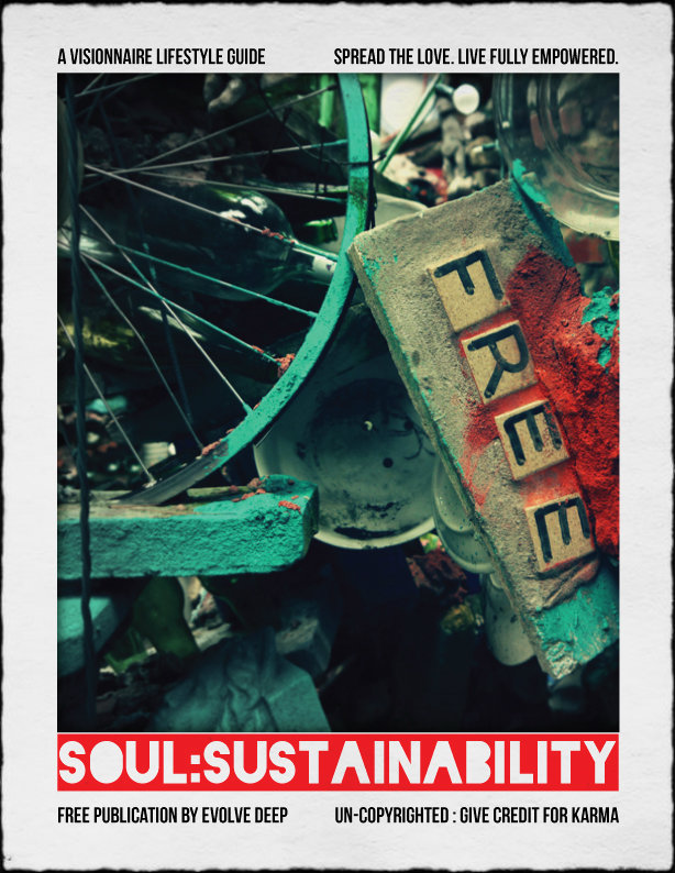 Soul Sustainability from Evolve Deep