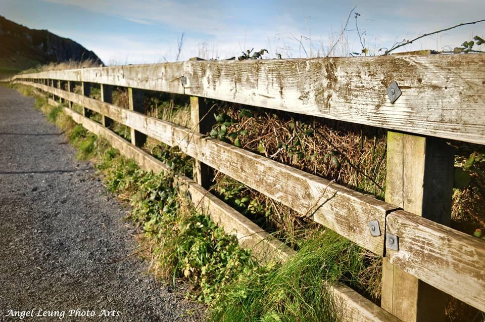 Giant Causeway, Northern Ireland