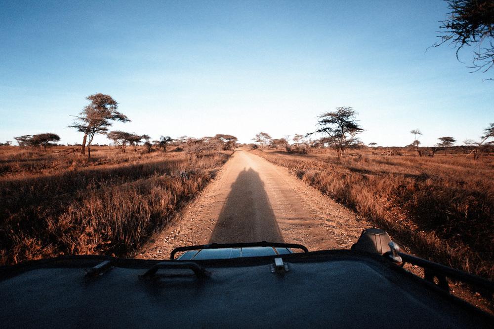 Tanzania 859.jpg