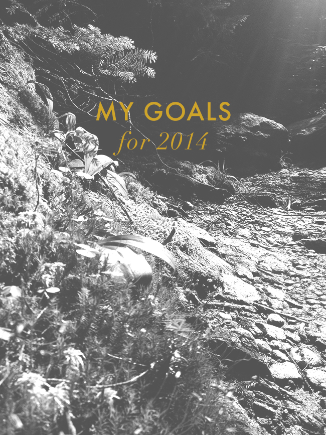 my-goals-for-2014
