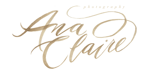 AC-Logo-FINAL