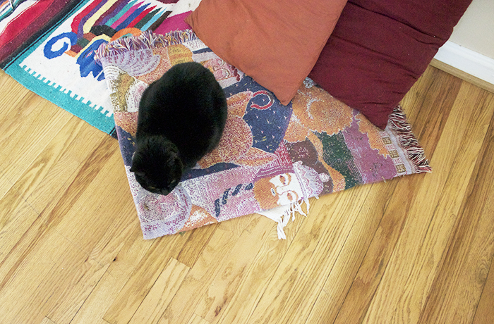 My-Home-Studio-Cat-Rug