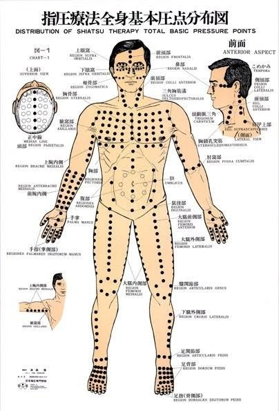 Healthy Wealth Human Body According To Chinese Culture