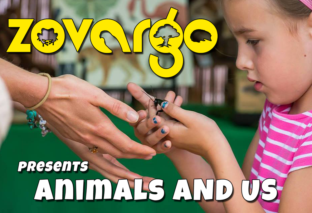Zovargo_Animals_and_Us