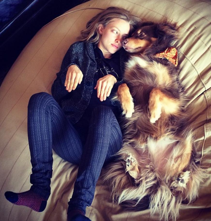 Amanda Seyfried & her adopted pup Finn