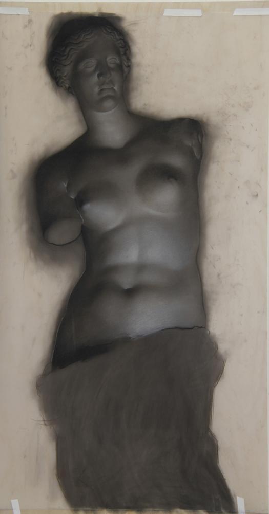 Venus (study), 2013