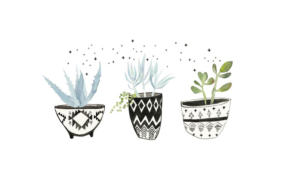 DIY Aztec Print Succulent Pots Love And Specs