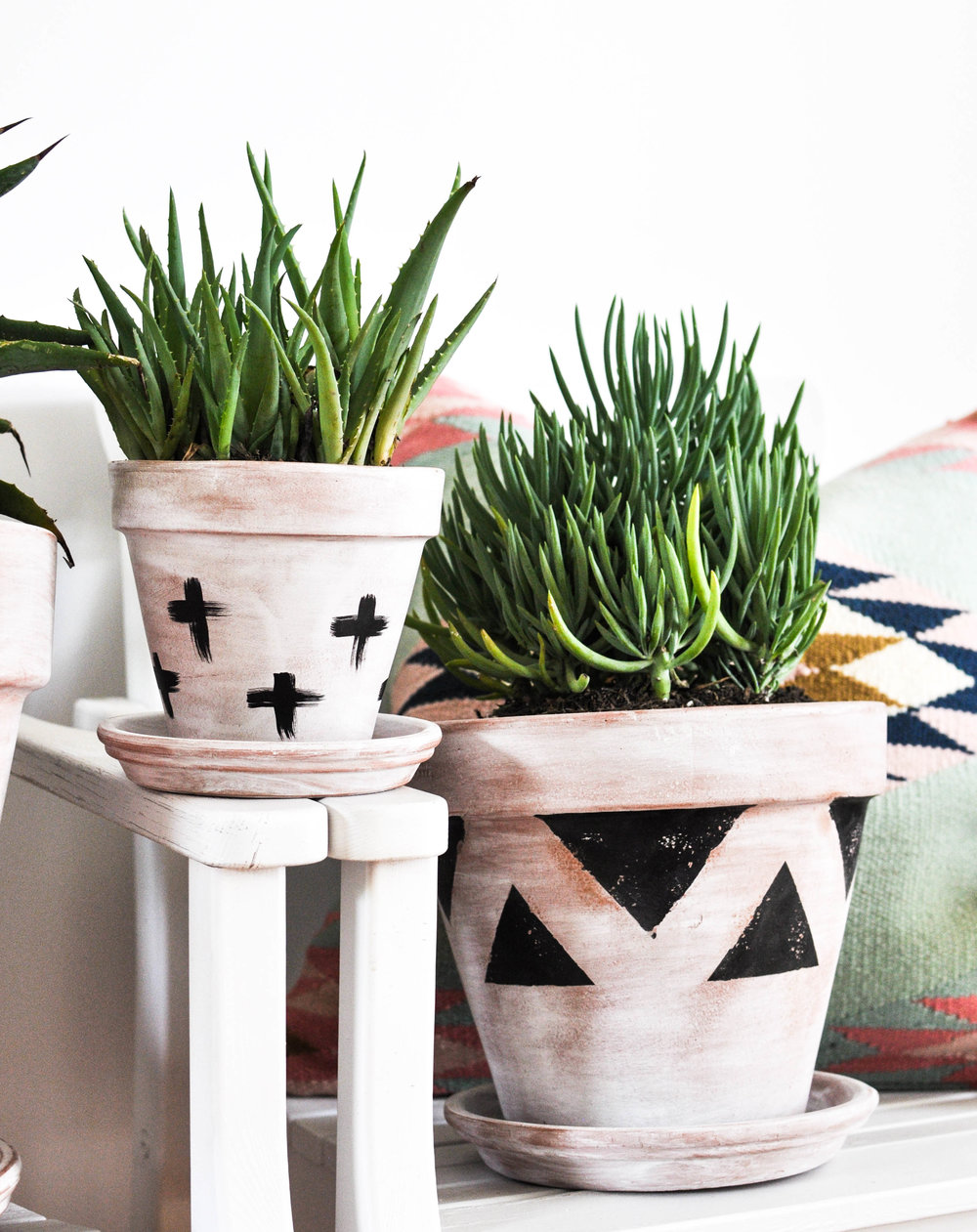 DIY whitewashed terra cotta pots