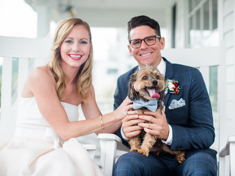 wedding-dog-outfit-ideas-with-bowtie.jpg