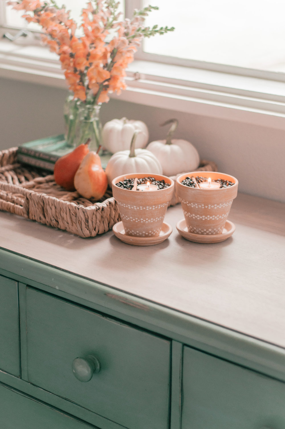 Easy, cheap Fall home decor project