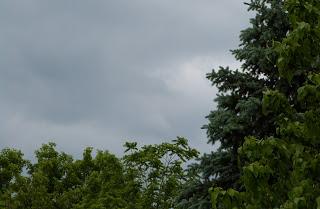 grey+sky.JPG