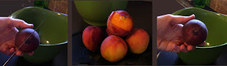 peeled+peaches+banner.jpg
