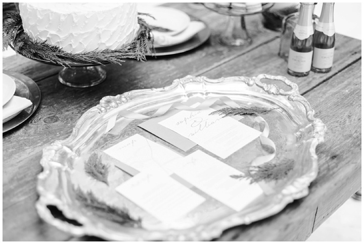 Winterham-Plantation-Wedding-Amelia-VA-photo-24.jpg