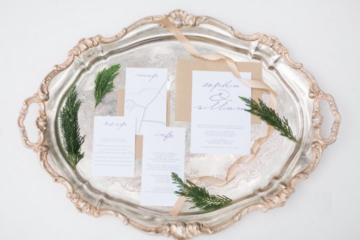 Winterham-Plantation-Wedding-Amelia-VA-photo.jpg